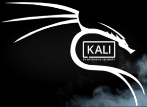 Kali USB Wireless Karte installieren